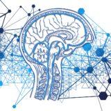 """<span class=""""title"""">催眠、暗示、洗脳、マインドコントロールの違いって</span>"""